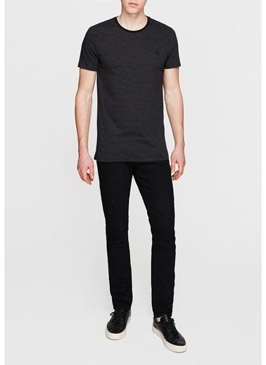Mavi Mavi Çizgili Siyah T-Shirt Siyah